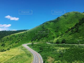 緑豊かな丘の中腹の眺めの写真・画像素材[4469422]