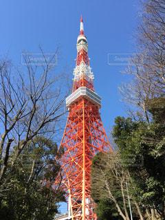 東京タワー - No.639044
