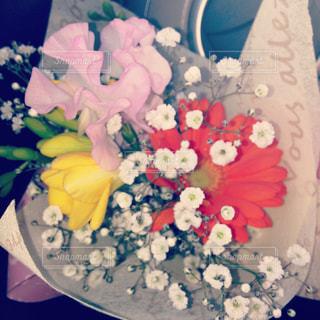 花の写真・画像素材[651130]