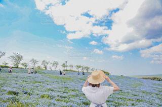 春の景色ネモフィラの写真・画像素材[4345440]