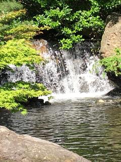 水辺 滝 森林 緑 葉っぱの写真・画像素材[639642]