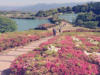 風景の写真・画像素材[638601]