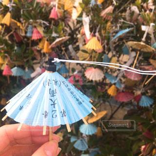 傘の写真・画像素材[638684]
