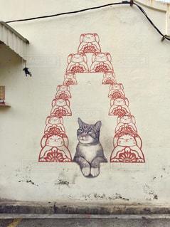 猫の写真・画像素材[639372]