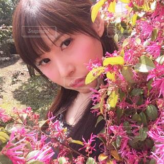 ピンクの花の小さな女の子の写真・画像素材[716791]