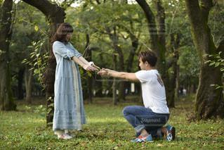 公園でフリスビーを投げ男の写真・画像素材[1240896]
