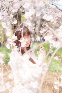 木の隣に立っている人の写真・画像素材[3052187]