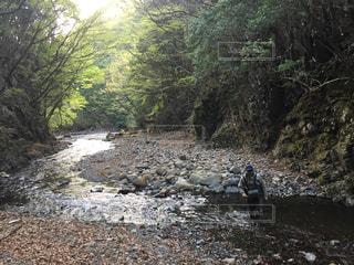 川の写真・画像素材[642438]