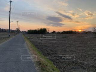 夕日の写真・画像素材[4125620]