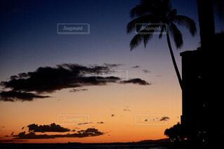 ハワイ ホノルル ビーチの写真・画像素材[640224]