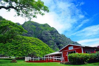 ハワイ クアロア牧場 クアロアランチの写真・画像素材[640226]
