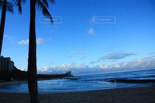 ハワイ ホノルル ビーチの写真・画像素材[640228]