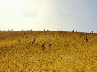 砂の写真・画像素材[644275]