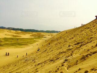 砂の写真・画像素材[644277]