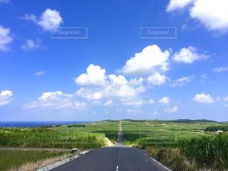 さとうきび畑の一本道(シュガーロード)2 喜界島の写真・画像素材[661887]