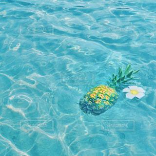 海の写真・画像素材[644873]
