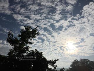 空には雲のグループの写真・画像素材[768585]
