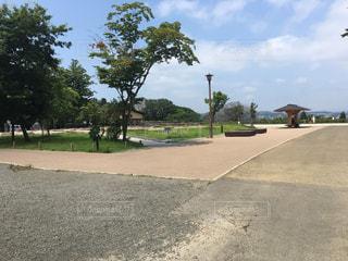 公園の写真・画像素材[643534]