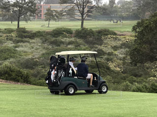 ゴルフ - No.652547