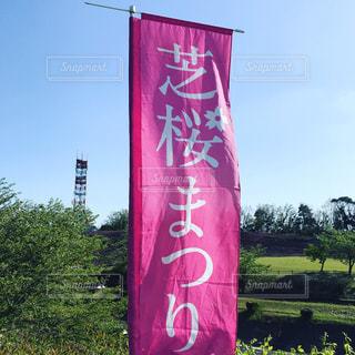 フィールド中の大きな赤い凧の写真・画像素材[1119508]