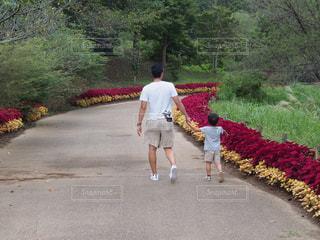 散歩 - No.1131526