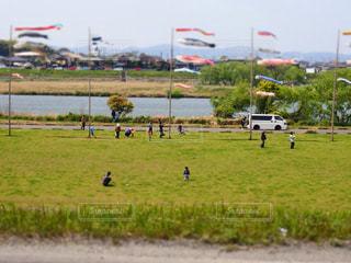 フィールドに凧の飛行の人々 のグループの写真・画像素材[771686]