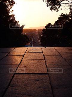 歩道に沈む夕日の写真・画像素材[781076]