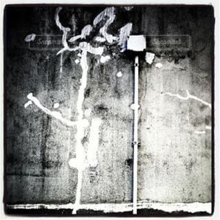 壁の写真・画像素材[647802]