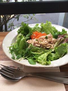 サラダの皿とテーブルの上のフォークの写真・画像素材[2692935]