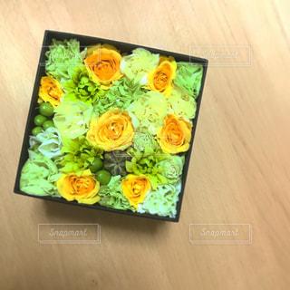 花の写真・画像素材[647229]