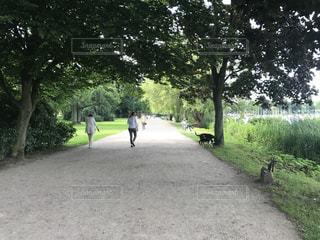 公園で散歩する人々 ドイツの写真・画像素材[1117650]
