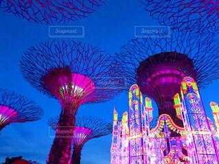 シンガポールの写真・画像素材[665879]