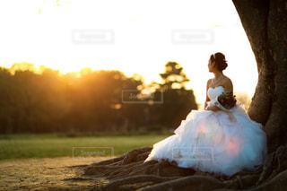 長い髪と背景の夕日の写真・画像素材[1210433]