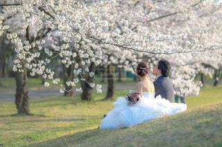 草の中に立っている人々 のカップルの写真・画像素材[1210435]