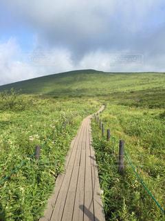 山の写真・画像素材[647964]