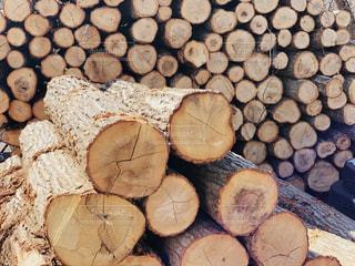 林業の現場、丸太が沢山置いてありますの写真・画像素材[2407901]