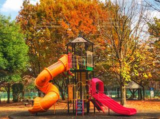 公園の遊具の写真・画像素材[913319]
