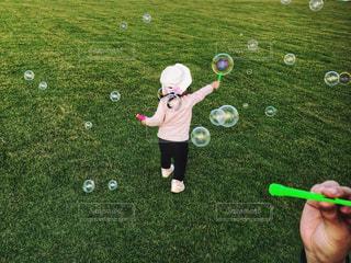 フィールド上の緑のボールの写真・画像素材[1009188]