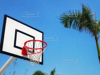 バスケの写真・画像素材[1293108]