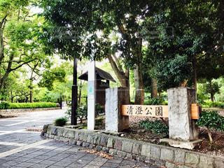 清澄公園の写真・画像素材[1386739]