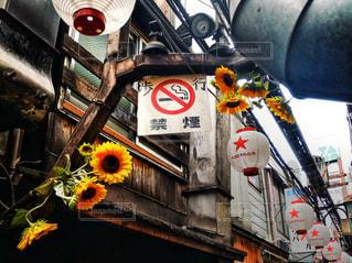 新宿の写真・画像素材[1423666]