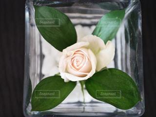 テーブルの上に座って花の花瓶の写真・画像素材[1588123]