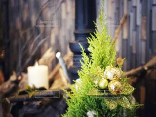 クリスマス風のインテリアの写真・画像素材[1641638]