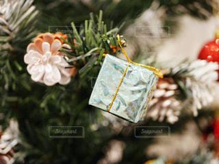 クリスマスツリーの写真・画像素材[1653325]