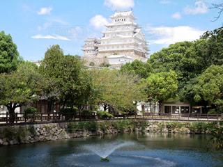 姫路市立動物園より眺める姫路城の写真・画像素材[1669170]