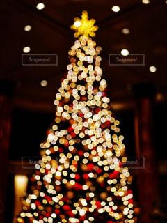 クリスマスツリーの写真・画像素材[1690550]