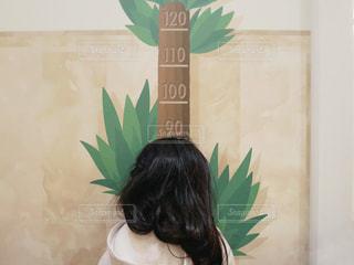 身長測定の写真・画像素材[1708559]