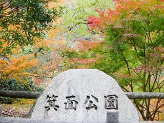 箕面公園の写真・画像素材[1742588]