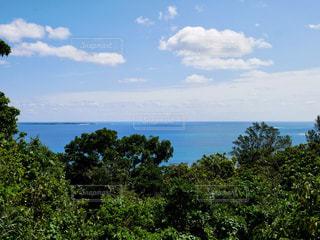 遠くに久高島の写真・画像素材[1993606]
