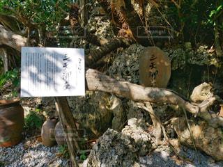 三天御座の写真・画像素材[2007072]